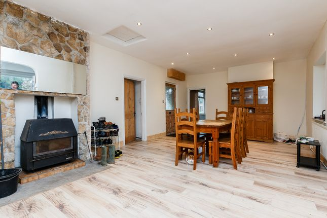 Thumbnail Detached bungalow for sale in White Hill, Langport, Somerset