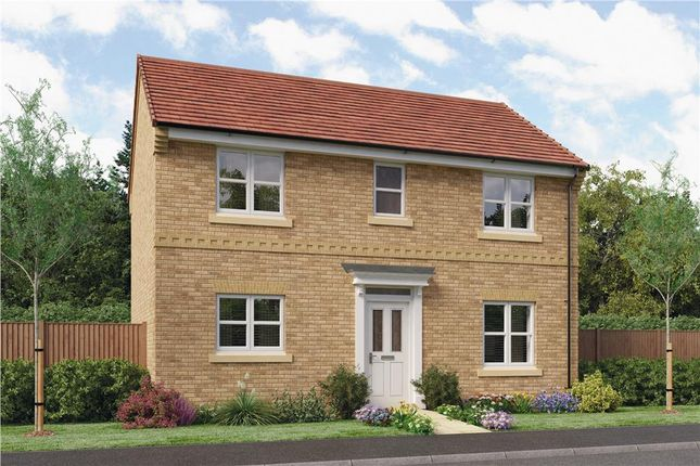 "Thumbnail Detached house for sale in ""Castleton"" at Oteley Road, Shrewsbury"