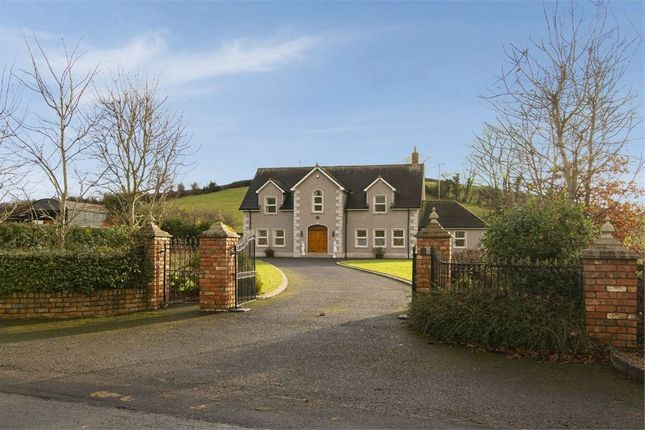 Thumbnail Detached house for sale in Drumilly Road, Armagh