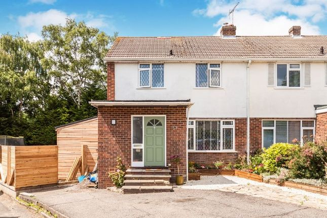Thumbnail Semi-detached house to rent in Ranelagh Crescent, Ascot, 8