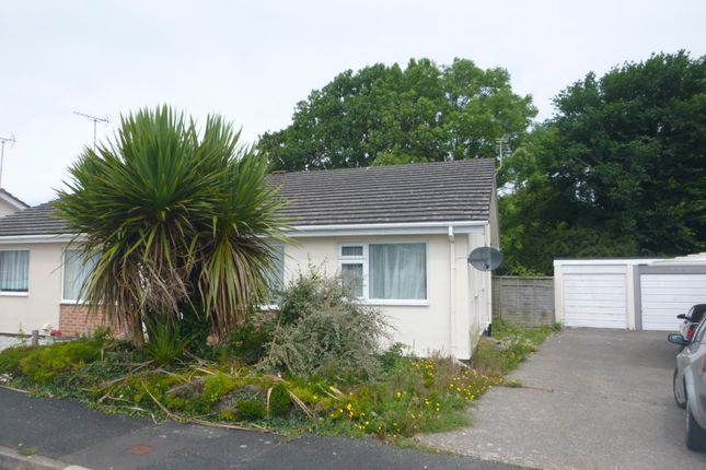 Thumbnail Semi-detached bungalow to rent in East Fairholme Road, Bude
