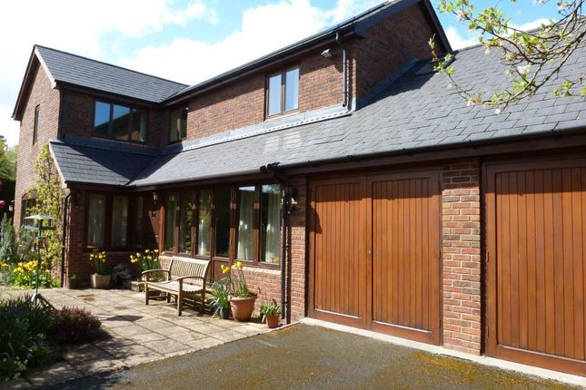 Thumbnail Detached house for sale in Wellington, Hereford