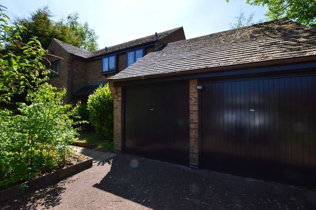 Thumbnail Detached house to rent in Cassandra Close, Gibbet Hill, Coventry