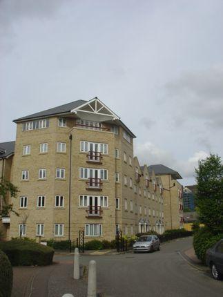 Thumbnail Duplex to rent in 129 Star Lane, Ipswich