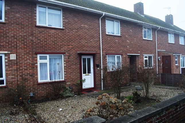Thumbnail Terraced house to rent in Scarnell Road, Norwich