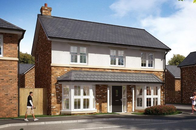 "Thumbnail Detached house for sale in ""The Pendlebury"" at Elms Way, Yarm"