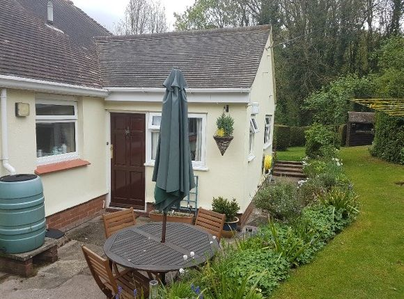 Thumbnail Semi-detached bungalow to rent in Foxes Bark, Callow, Hereford