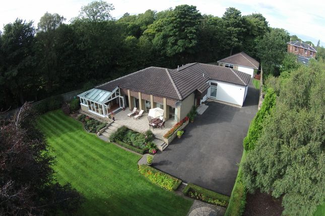 Thumbnail Detached bungalow for sale in Mill Road, Bothwell