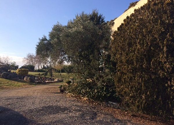 Thumbnail Property for sale in 34690, Fabrègues, Fr