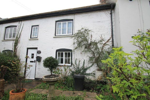 Thumbnail Property to rent in Main Road, Arundel