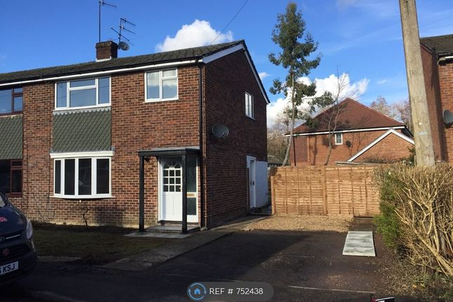 Thumbnail Semi-detached house to rent in Pitfold Close, Haslemere