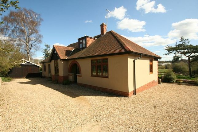 Thumbnail Property to rent in Priory Road, Stamford
