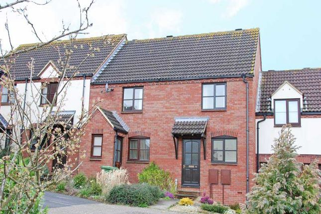Thumbnail Terraced house to rent in Bazley Square, Exeter