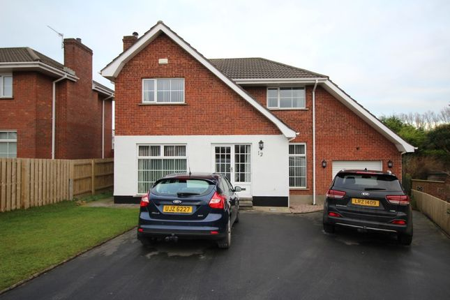 Thumbnail Detached house for sale in Laragh Park, Bangor