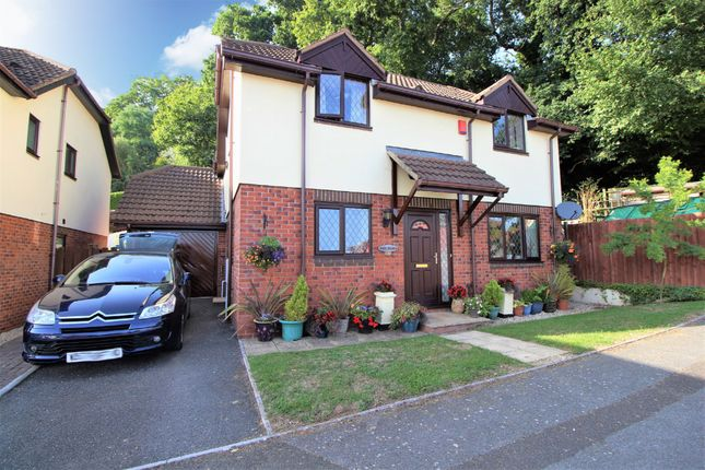 Thumbnail Detached house for sale in Dolphin Crescent, Paignton