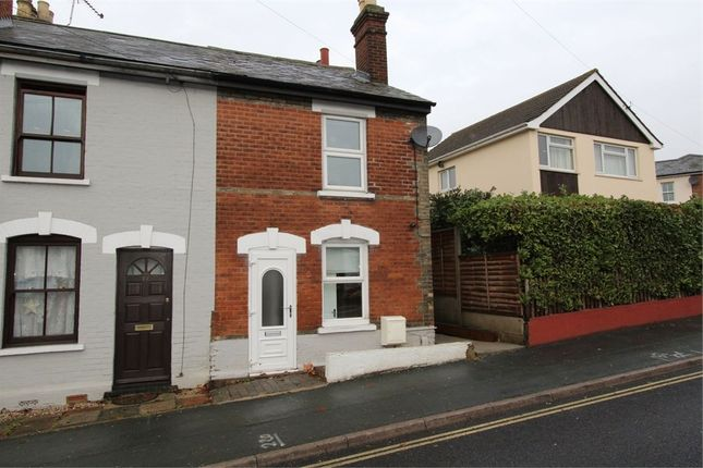 Thumbnail Semi-detached house to rent in Ipswich Road, Colchester