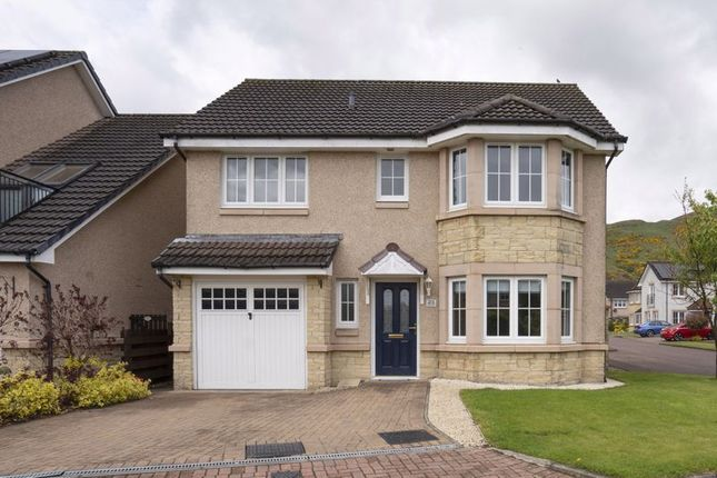 Thumbnail Detached house for sale in Birch Grove, Menstrie