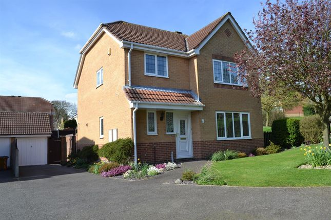 Thumbnail Detached house for sale in Redhill Lodge Road, Newhall, Swadlincote