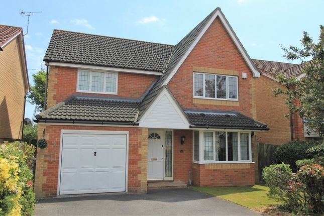 Thumbnail Detached house for sale in Magpie Close, Fareham