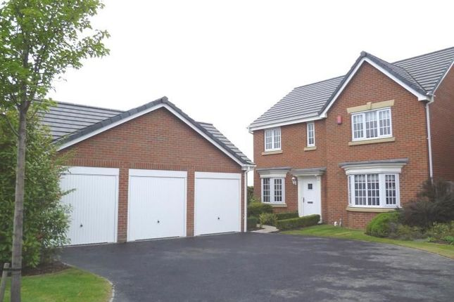 Thumbnail Detached house to rent in Halesworth Road, Sheffield