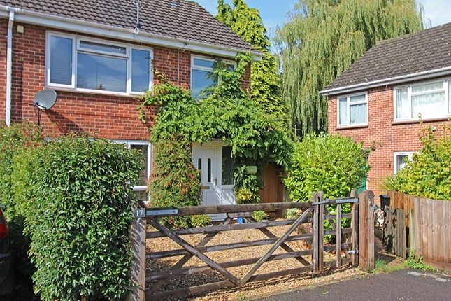 Thumbnail Semi-detached house for sale in Meadow Close, Burley, Ringwood