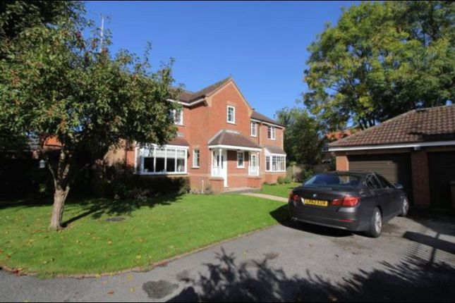 Thumbnail Detached house to rent in Westcroft, North Newbald, York, East Riding Of Yorkshi