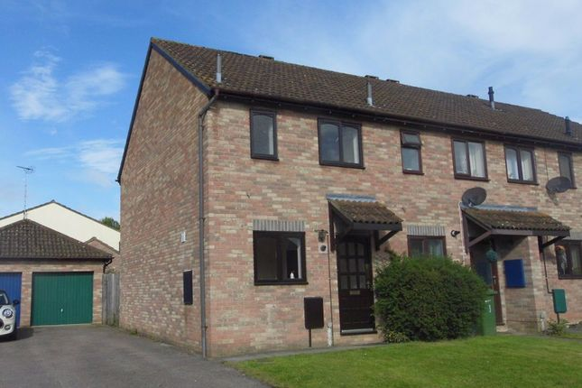 Thumbnail Semi-detached house to rent in Holm Oak Road, Belmont, Hereford