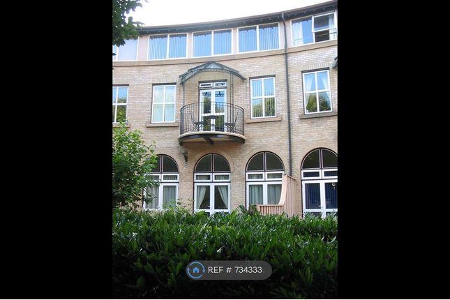 Thumbnail Flat to rent in Alcantara Crescent, Southampton
