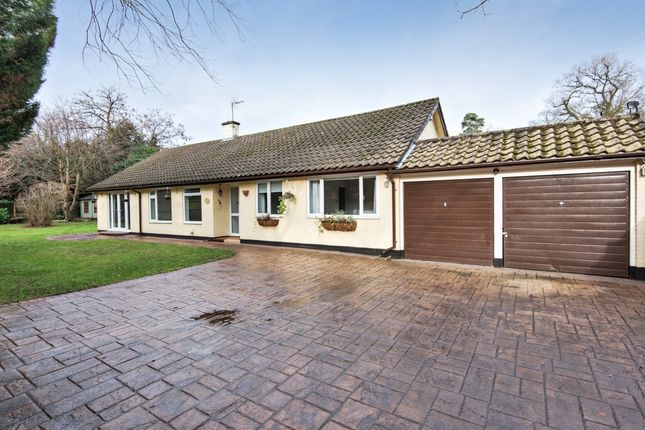 Thumbnail Bungalow to rent in St. Georges Lane, Ascot