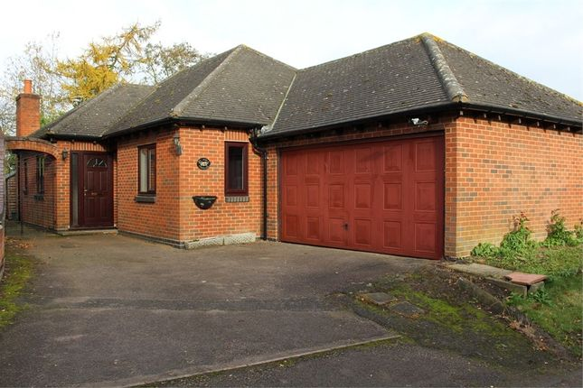 Thumbnail Detached bungalow to rent in Dunton Lane, Ashby Parva, Lutterworth, Leicestershire