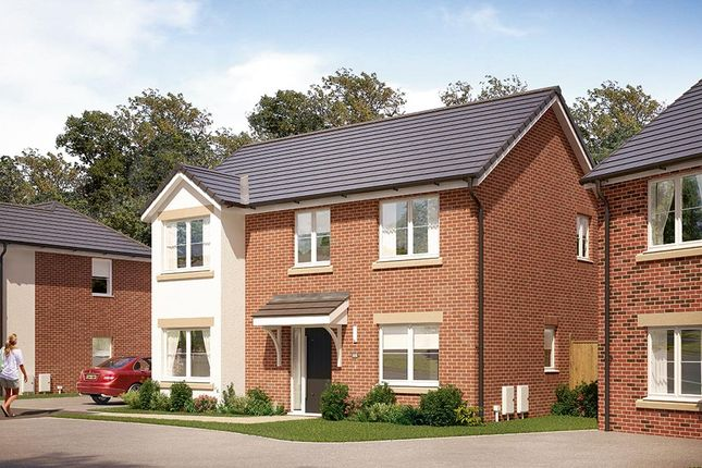 "Thumbnail Detached house for sale in ""The Pendlebury"" at High Gill Road, Nunthorpe, Middlesbrough"
