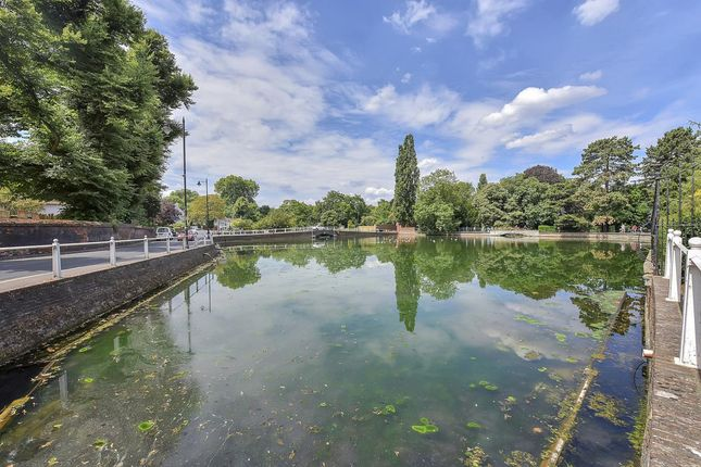 The Pond Carshalton