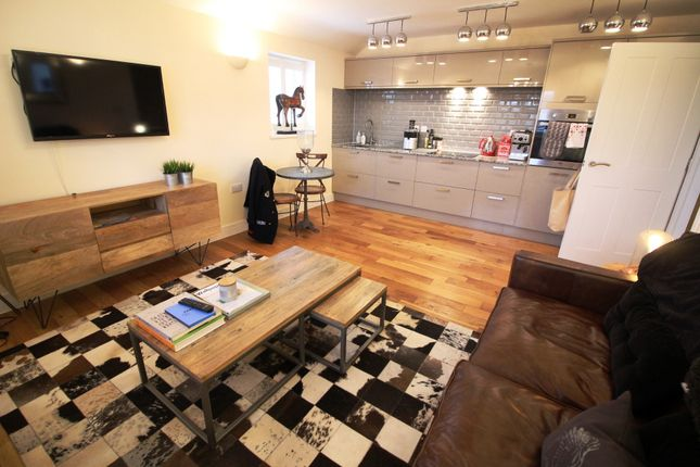Thumbnail Terraced house to rent in Howard Gardens, City Centre, Cardiff