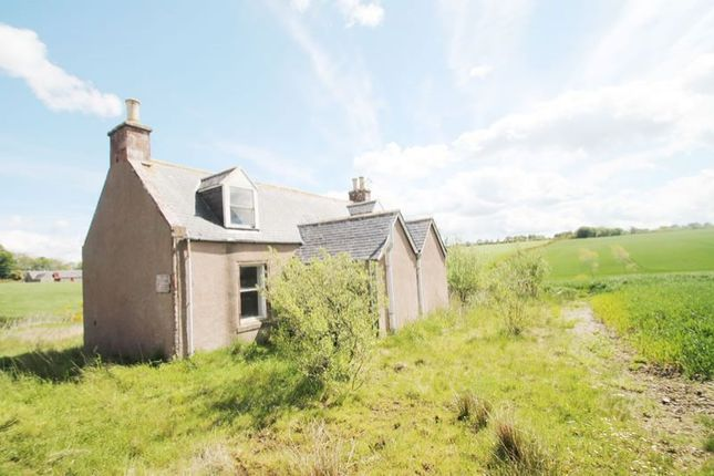 Thumbnail Detached house for sale in Mid Pitglassie Cottage, Turriff AB538Ap