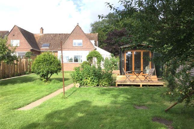 Thumbnail Semi-detached house to rent in Noade Street, Ashmore, Salisbury