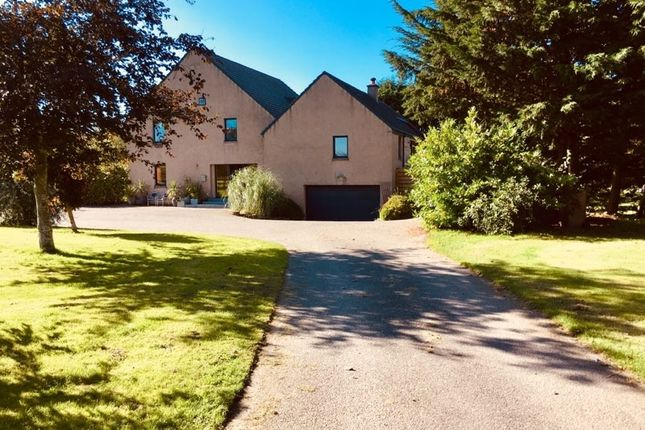 Thumbnail Detached house for sale in Whiteinch, Forres, Moray