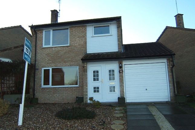 Thumbnail Detached house to rent in Leen Valley Drive, Shirebrook, Mansfield