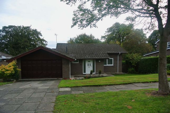 Thumbnail Bungalow to rent in Wansdyke, Morpeth