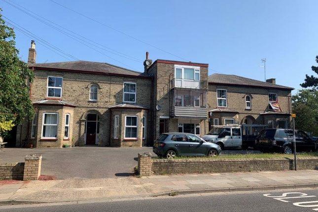 Studio to rent in Park Road, Ipswich IP1