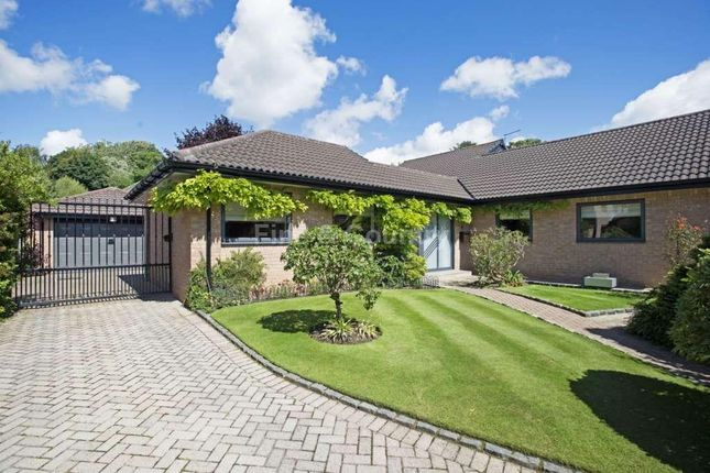 Thumbnail Detached bungalow for sale in The Calders, Allerton, Liverpool
