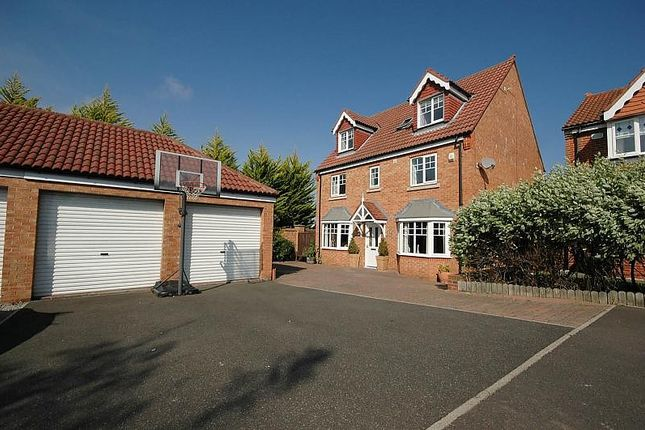 Thumbnail Detached house for sale in Callum Drive, South Shields