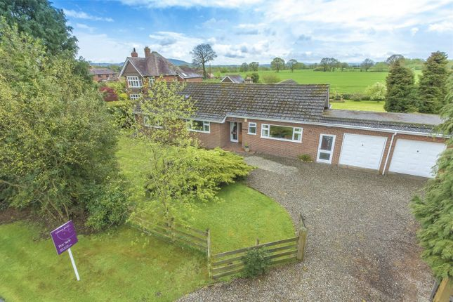 Thumbnail Detached bungalow for sale in Rowden Cope, Rodington Heath, Shrewsbury