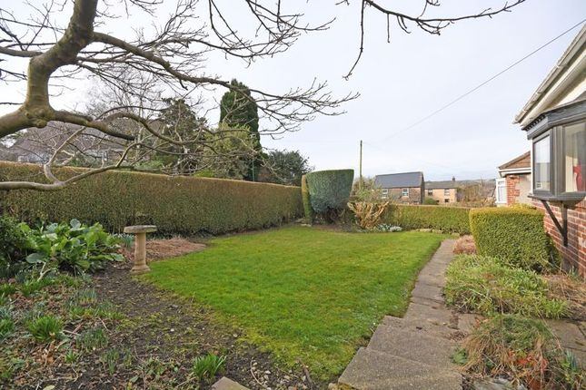 Front Garden of Hallowes Lane, Dronfield, Sheffield S18