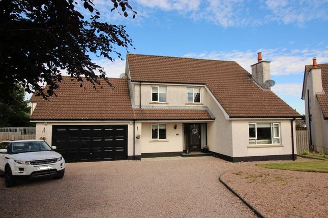 Thumbnail Detached house for sale in Glebe Manor, Annahilt, Hillsborough