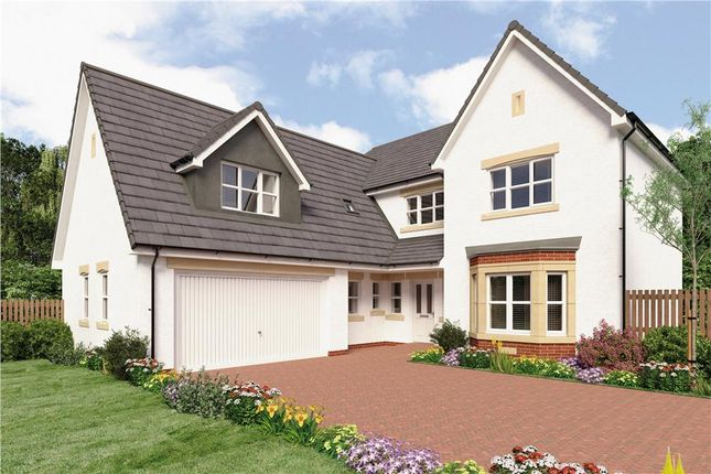 "Thumbnail Detached house for sale in ""Leader"" at Broomhouse Crescent, Uddingston, Glasgow"