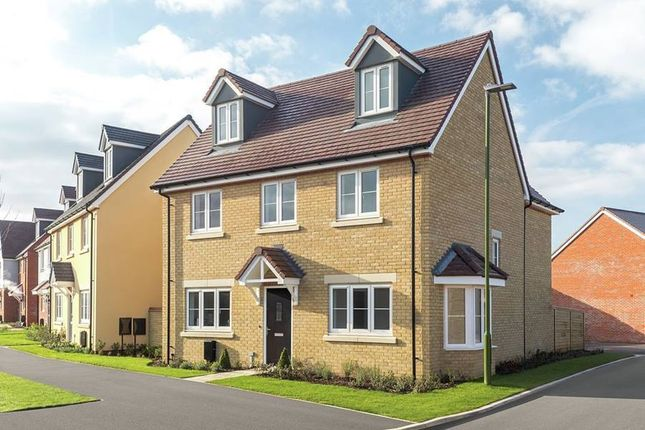 "Thumbnail Detached house for sale in ""The Chichester Oatfield - Plot 20"" at Shopwhyke Road, Chichester"