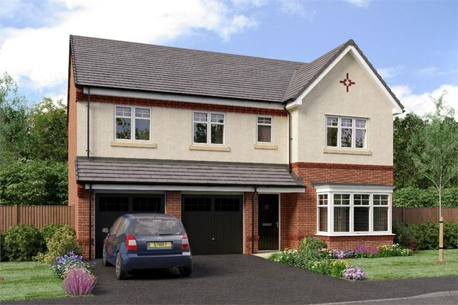 "Thumbnail Detached house for sale in ""The Buttermere"" at Sadberge Road, Middleton St. George, Darlington"