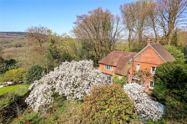 Thumbnail Detached house for sale in Sandy Lane, Grayswood, Haslemere, Surrey