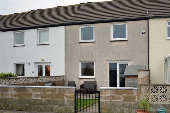 Thumbnail Terraced house for sale in Pepperhall Walk, Millom, Cumbria