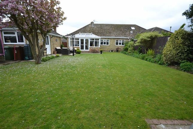 Thumbnail Bungalow for sale in Coniston Crescent, Humberston, Grimsby